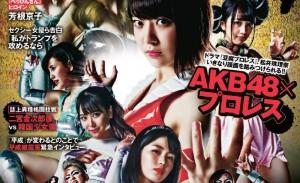 AKB48妹子格斗套图