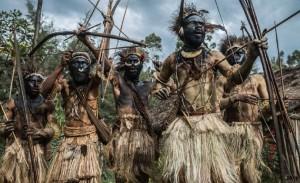 很多认同丛林法则的人,从来就没有在真正的丛林社会中生活过哪怕一天