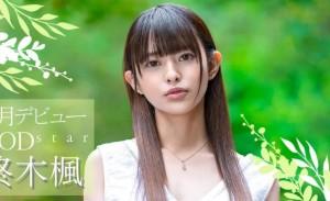关于柊木楓