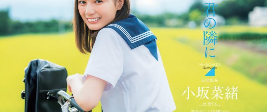 坂道系大合集第36弹